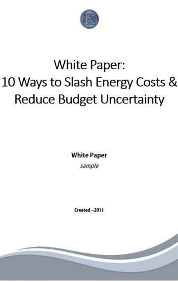 Manage Energy Costs White Paper (sample)